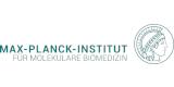 Max-Planck-Institut für molekulare Biomedizin
